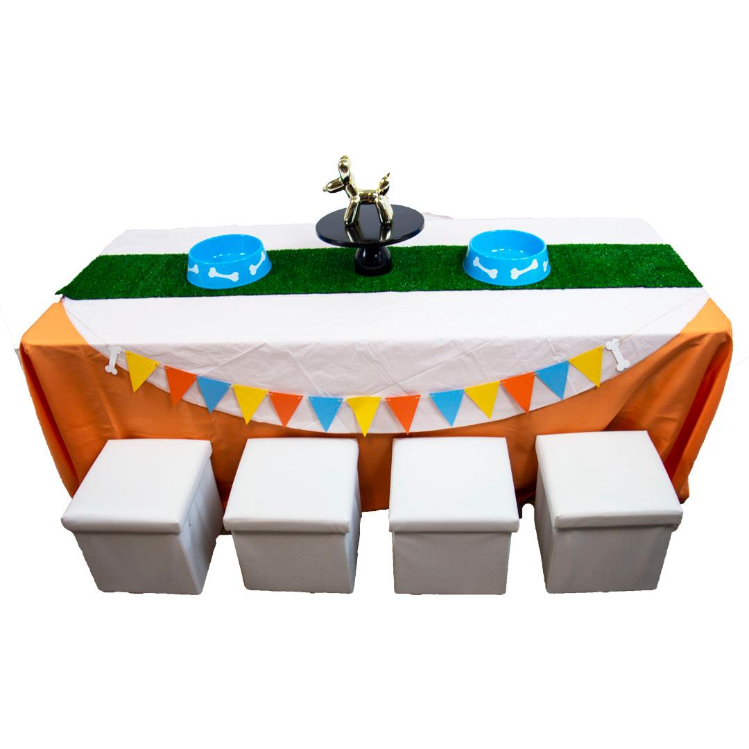 Puppy Party Kids Table RENT