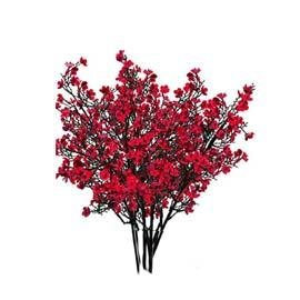 Flowers: Red RENT